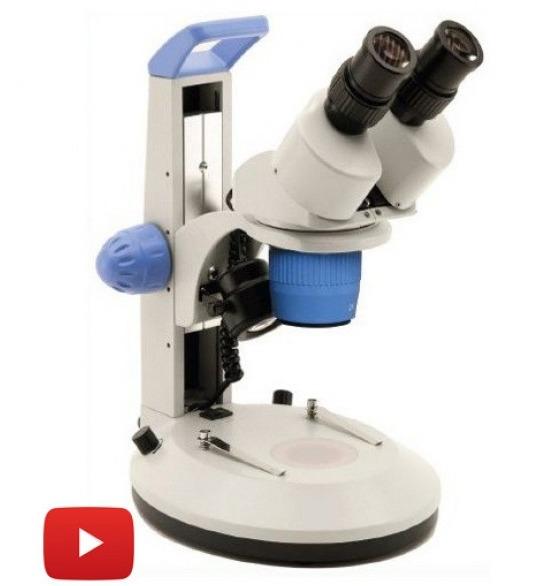 Microscopio stereoscopico
