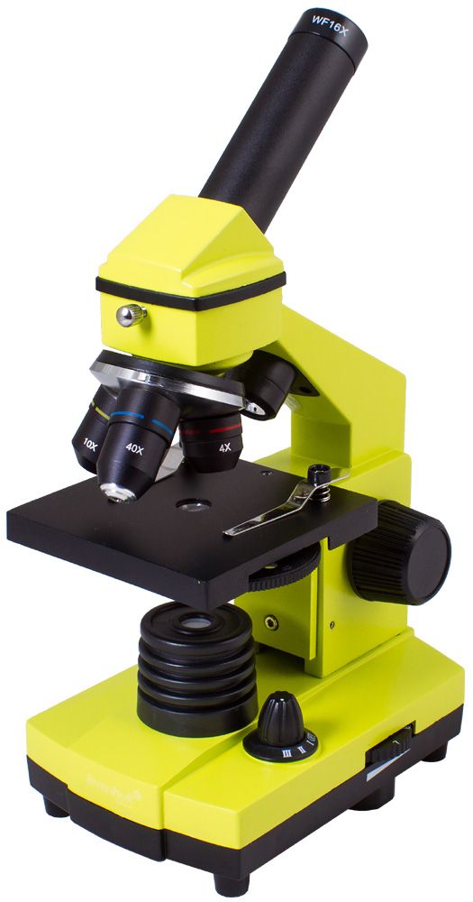 Microscopio Levenhuk Rainbow 2L PLUS, verde limetta
