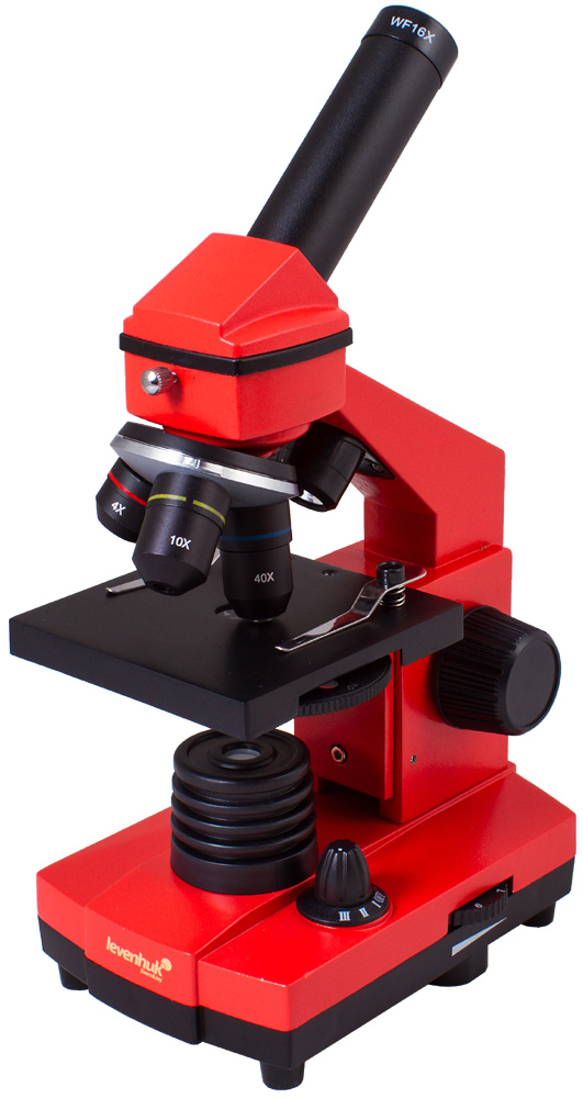 Microscopio Levenhuk Rainbow 2L PLUS, arancio