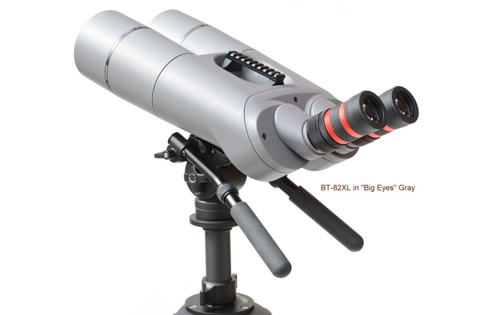 Binocolo Gigante Oberwerk BT 82 XL HD Grey